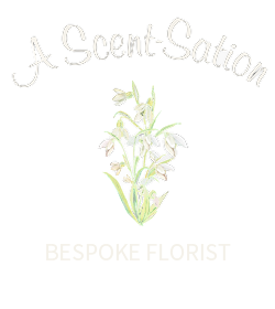 A Scent-Sation